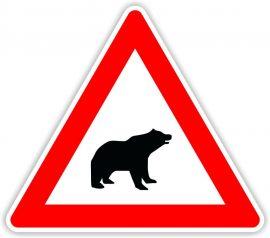 Medve veszély közlekedési tábla